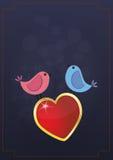 Birds heart Royalty Free Stock Photography