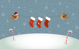 Birds holding Christmas socks Stock Images