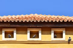 Birds home. Dove into the roof of the dwelling Royalty Free Stock Photos