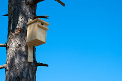Birds House. Image of a wooden birds house on a tree royalty free stock image