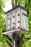 Birds house on a stick under a tree royalty free stock image