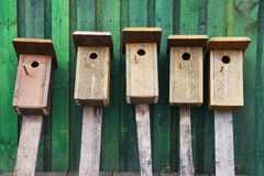 Birds houses Royalty Free Stock Photos