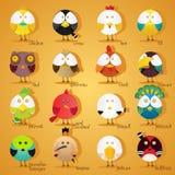 Birds icon set Stock Photos