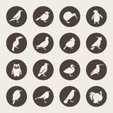 Birds icon set Royalty Free Stock Photo