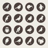 Birds icon set Royalty Free Stock Photo