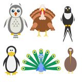 Birds icon set. Vector illustration Royalty Free Stock Images