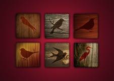 Birds Icons Stock Photo