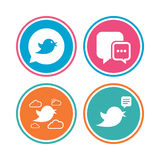 Birds icons. Social media speech bubble. Stock Photography