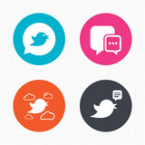 Birds icons. Social media speech bubble Royalty Free Stock Image
