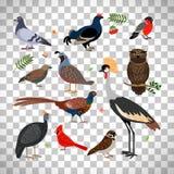 Birds icons on transparent background stock illustration