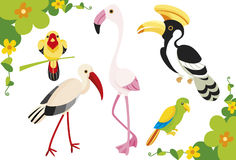 Birds illustration Stock Photos