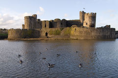 Birds In The Moat Royalty Free Stock Photos