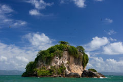 Birds Island, Los Haitises National Park Stock Photos