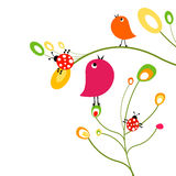 Birds and ladybirds Royalty Free Stock Image