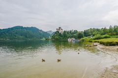 Niedzica Castle, Poland. Birds in the lake and Medieval Niedzica Castle, also known as Dunajec Castle in background. Poland royalty free stock photos