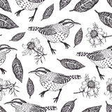 Birds and leaves background. Birds and leaves seamless background Stock Photos