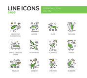 Birds - line design icons set Royalty Free Stock Images
