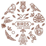 Birds line icons. Set of vector outline birds icons arranged in circle royalty free illustration