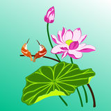 Birds and lotus Royalty Free Stock Photo