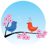 Birds in love Stock Photo