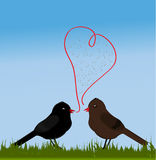 Birds with love Stock Photo