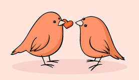 Birds in love Stock Photography