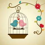 Birds love Stock Photo