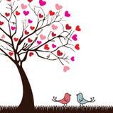 Birds love. Design over white background vector illustration Royalty Free Stock Images