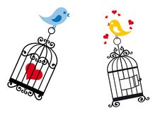 Birds in love with birdcage. Love birds with birdcage and heart,  background Royalty Free Stock Photos