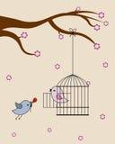 Birds in love Stock Photography