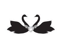 Birds in love. Couple of swans silhouette. Two love hearts conce Stock Image