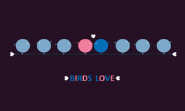 Birds love Stock Images