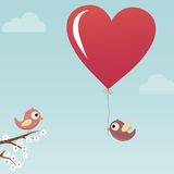 Birds in Love Royalty Free Stock Images