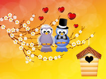 Birds in love stock illustration