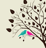 Birds love Royalty Free Stock Images