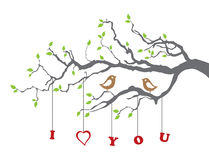 Birds in love on a tree branch