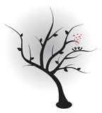 Birds in love on the tree. Vector illustration. Royalty Free Stock Image