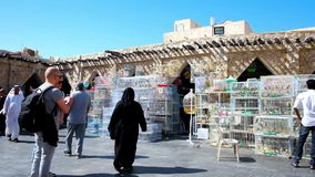 Birds market of Souq Waqif in Doha, Qatar. DOHA, QATAR - FEBRUARY 13, 2018: The Birds market is important department of authentic Souq Waqif, here visitors can stock video footage
