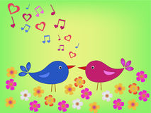 Birds on meadow in love Royalty Free Stock Photo