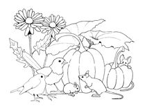 Birds and Mice with Pumpkins and Flowers, Coloring Page. This is my original line drawing of some mice and birds in the pumpkin patch with daisies in the Stock Photo