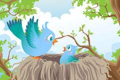Birds in nest. A vector illustration of birds in the nest Stock Images