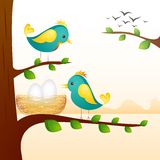 Birds with Nest. Vector illustration of birds with nest sitting on tree branch Stock Images