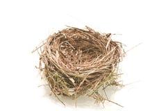 Bird nest. On white background Stock Images