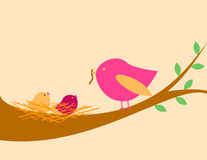 Free Birds Nest Stock Photos - 7365383