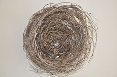 Brown bird nest. Naturally created baby bird's nest isolated on white stock photo