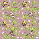 Birds, nest on branch. Seamless repeating pattern. Watercolor Stock Photos