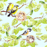 Birds, nest on branch. Seamless repeating pattern. Watercolor Stock Photo