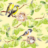 Birds, nest on branch. Seamless repeating pattern. Watercolor Royalty Free Stock Photo
