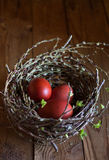 Birds nest with eggs , and the first leaves. Spring is the beginning of life , the beginning of life of eggs, nest it home and holiday Easter Royalty Free Stock Photography