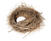 Birds nest with eggs on the white background. (isolated) Stock Images